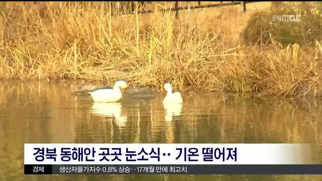MBC 생활뉴스에 대한 동영상 캡쳐 화면